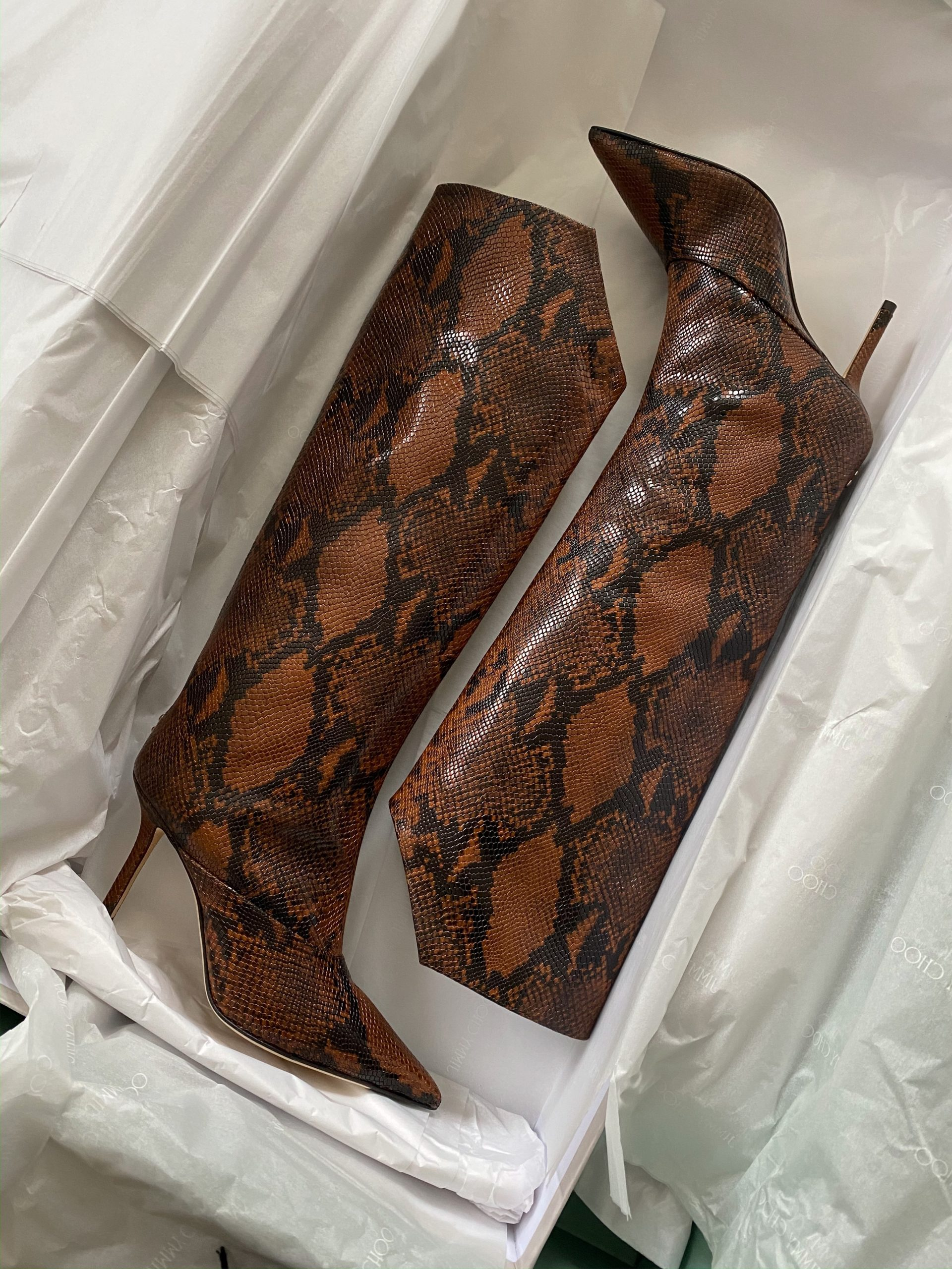 The Snakeskin Print Boots of My Dreams